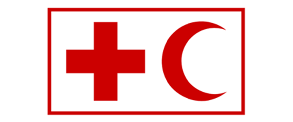 Consultant, IT support for IFRC Logistics Applications